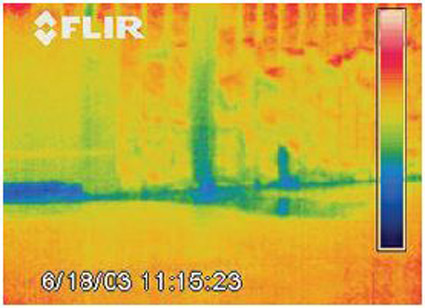 Business thermal imaging video systems