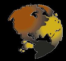 World Telecom & Surveillance, Inc Icon